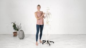 Yoga Anatomy TTC Training